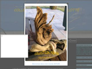 artboisflotte-collectionprivee